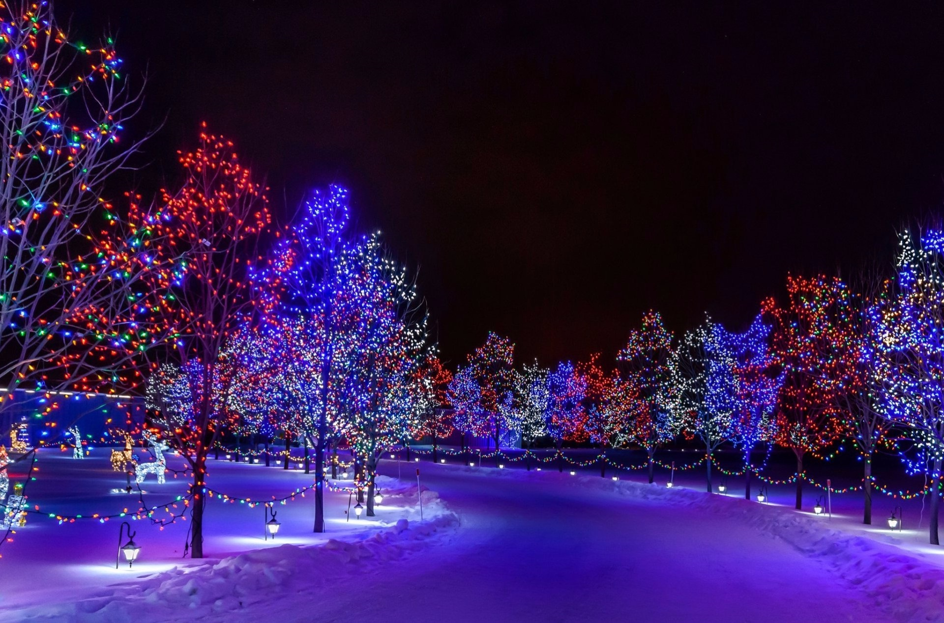 Фото зима новый год - Праздники - Картинки для рабочего ...