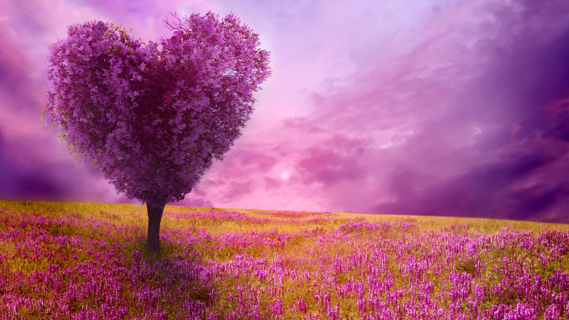 Love pictures with nature Love quot;s Pictures - LoveThisPic